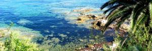 Explorez l'île de beauté